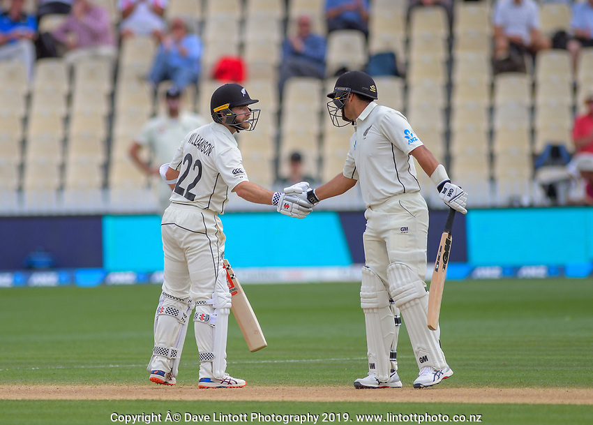 Ross Taylor congratulates Kane Williamson on his half century during day five of the international cricket 2nd test match between NZ Black Caps and England at Seddon Park in Hamilton, New Zealand on Tuesday, 3 December 2019. Photo: Dave Lintott / lintottphoto.co.nz