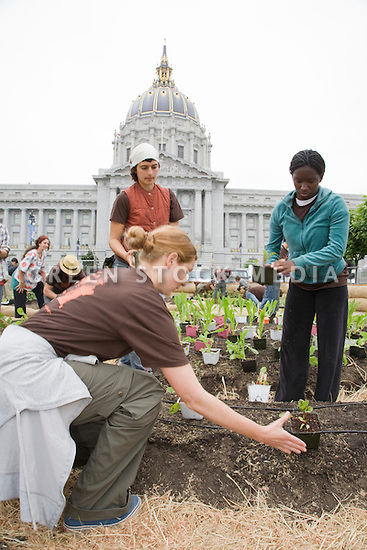 "Dahuanah Turner (R) and other volunteers place plants during Community Planting Day (July 12, 2008) of the Slow Food Nation Victory Garden at San Francisco's Civic Center. The garden project ""demonstrates the potential of a truly local agriculture practice that unites and promotes Bay Area urban gardening organizations, while producing high quality food for those in need.""* The garden is planted on the same site as the post-World War II garden sixty years ago. The food will be grown over a period of two months, harvested, and donated to people in need..*slowfoodnation.org)"