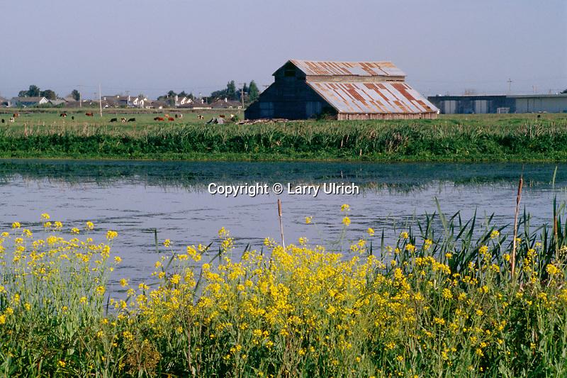 Arcata Marsh and Wildlife Sanctuary<br /> Humboldt Bay<br /> Arcata<br /> Humboldt County,  California