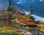 Mount Baker-Snoqualmie National Forest, Washington<br /> Fall colors around an alpine tarn at Heather Meadows