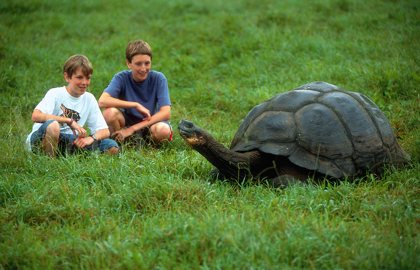 Kids observing a giant tortoise, Galapogos Islands, Ecuador