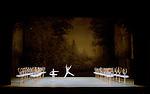 LA BAYADERE....Auteur : PETIPA Marius KHOUDEKOF Serguei..Choregraphie : NOUREEV Rudolf..Mise en scene : NOUREEV Rudolf..Compositeur : MINKUS Ludwig..Orchestre : Orchestre COLONNE..Decor : FRIGERIO Ezio..Lumiere : CHELI Vinicio..Costumes : SQUARCIAPINO Franca..Avec :..LETESTU Agnes : Nikiya..MARTINEZ Jose : Solor..Lieu : Opera Garnier..Ville : Paris..Le : 15 05 2010..© Laurent PAILLIER / photosdedanse.com..All rights reserved