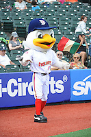 Brooklyn Cyclones mascot Sandy during game against the Hudson Valley Renegades at MCU Park on July 28, 2013 in Brooklyn, NY.  Brooklyn defeated Hudson Valley 4-2.  Tomasso DeRosa/Four Seam Images