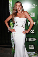 FOX, 20th Century FOX Television, FX Networks And National Geographic Channel's 2014 Emmy Award Nomi