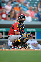 Rochester Red Wings catcher Juan Graterol (50) looks into the dugout during a game against the Indianapolis Indians on July 24, 2018 at Victory Field in Indianapolis, Indiana.  Rochester defeated Indianapolis 2-0.  (Mike Janes/Four Seam Images)