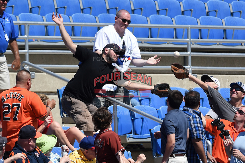 Fans reach for a foul ball during a Toronto Blue Jays Spring Training game against the Houston Astros on March 9, 2015 at Florida Auto Exchange Stadium in Dunedin, Florida.  Houston defeated Toronto 1-0.  (Mike Janes/Four Seam Images)
