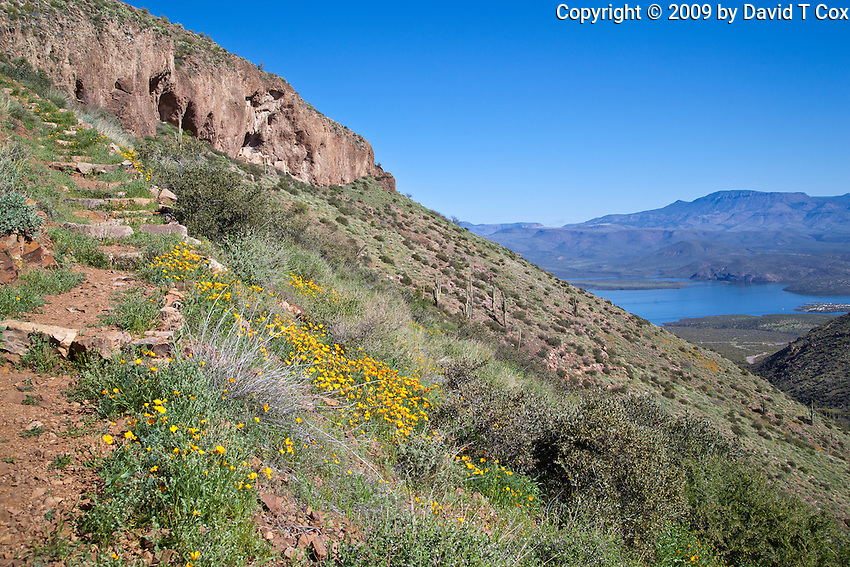 upper Cliff Dwellings, Tonto National Monument, Arizona