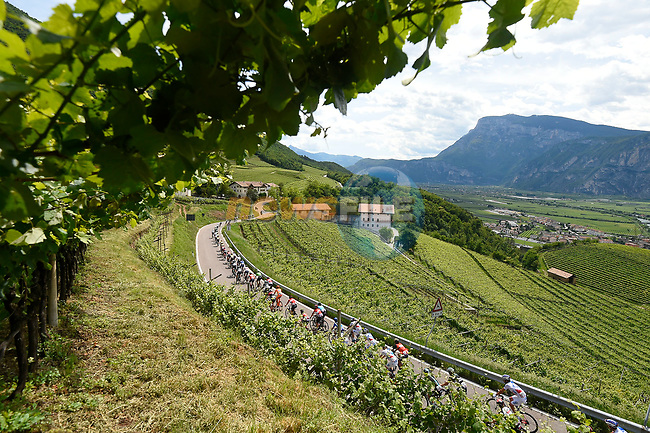 The peloton in action during Stage 17 of the 100th edition of the Giro d'Italia 2017, running 219km from Tirano to Canazei, Italy. 24th May 2017.<br /> Picture: LaPresse/Fabio Ferrari | Cyclefile<br /> <br /> <br /> All photos usage must carry mandatory copyright credit (&copy; Cyclefile | LaPresse/Fabio Ferrari)