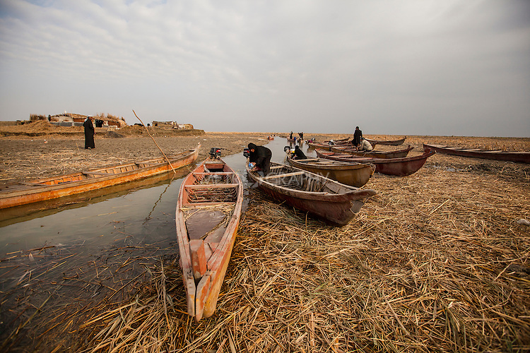 15/12/2015-Chbaish,Iraq- Canoes in the Iraqi marshes, used for transportation and collecting reeds.