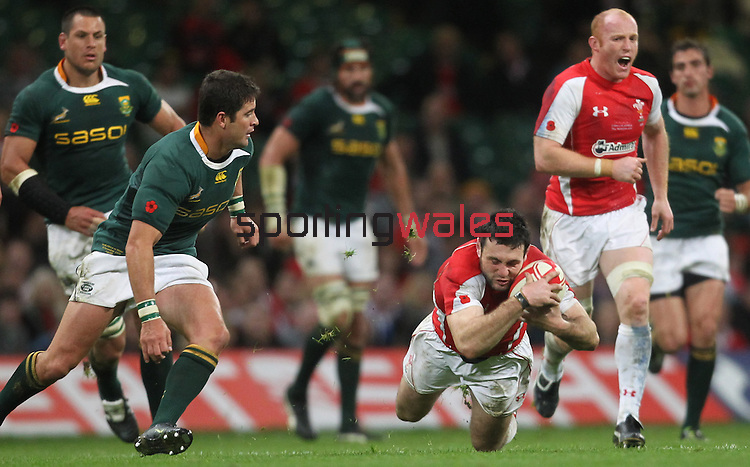 Stephen Jones dives on the loose ball..Invesco Perpetual '10 Series.Wales v South Africa.13.11.10.Photo Credit: Steve Pope-Sportingwales