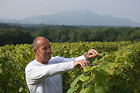 """Europe/France/Aquitaine/64/Pyrénées-Atlantiques/ Ahetze:  Christian Duplaissy restaurant """"La Ferme Ostalapia"""" dans ses vignes face à la Rhune"""