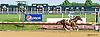 F Sixteen winning at Delaware Park on 8/1/15