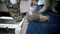 Nikki Harris' (GBR/Telenet-Fidea) muddy shoe stepping onto the podium<br /> <br /> Superprestige Gavere 2014