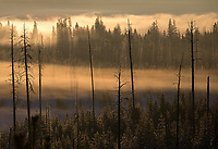 Sunrise near Yellowstone Lake.  It's too bad about the power lines.