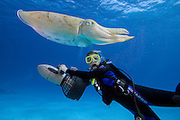 Diver (MR) on underwater scooter and a common cuttlefish, Sepia officinalis, in Palau, Micronesia.