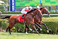 Scenes from around the Saratoga Race Course on Travers Day, Aug. 26, 2017.  Profiteer (no. 1), ridden by John Velazquez and trained by Claude McGaaughey III, wins race five.