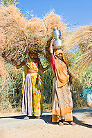 Two women carrying hay and water in rural Rajasthan. (Photo by Matt Considine - Images of Asia Collection)