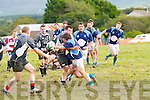 Iveragh Eagles Dan Riordan takes a big hit from Killorglin's Colm Conway(Capt) after he offloads to the running Donnie Coffey in the Foley Cup semi Final held in Cahersiveen on Saturday. Iveragh Eagles 7 Killorglin 34.