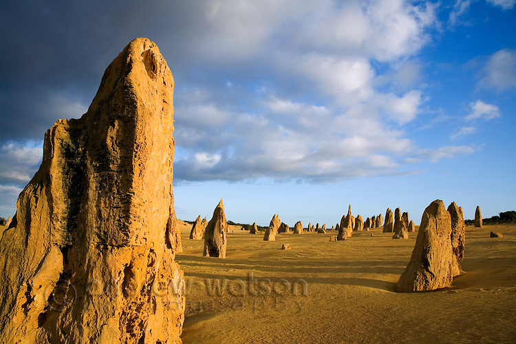 Morning light at the Pinnacles Desert in Nambung National Park.  Cervantes, Western Australia, AUSTRALIA. © Andrew Watson / Axiom