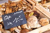 On a street market. Cepes porcini mushrooms. Bordeaux city, Aquitaine, Gironde, France