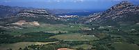 Europe/France/Corse/2B/Haute-Corse/Nebbio/Patrimonio: Le vignoble et le golfe de Saint-Florent au loin