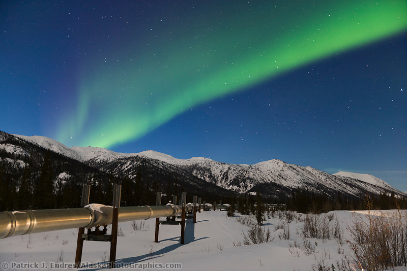 Aurora borealis over the trans Alaska oil pipeline near Wiseman, Alaska in the Brooks Range, Alaska