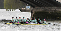 Hammersmith, GREATER LONDON. United Kingdom Cambridge University  Boat  Club, Pre Boat Race Fixture CUBC vs ITA M8+ for the 2017 Boat Race The Championship Course, Putney to Mortlake on the River Thames.<br /> <br /> Saturday  18/03/2017<br /> <br /> [Mandatory Credit; Peter SPURRIER/Intersport Images]<br /> CUBC<br /> <br /> [R-L]. S. Henry Meek, 7. Lance Tredell,6. Patrick Eble,5. Aleksander Malowany, 4. Timothy Tracey, 3. James Letten, 2. Freddie Davidson, B. Ben Ruble and Cox. Hugo Ramambason