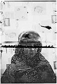 Mielno, Poland, 13/02/2011<br /> &quot;Swell&quot;<br /> Photo: Mateusz Sarello / Napo Mentor<br /> <br /> Mielno, Polska, 13/02/2011<br /> &quot;Martwa fala&quot;<br /> Fot: Mateusz Sarello / Napo Mentor