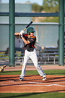 Edward Walden (17) of Minarets High School in Coarsegold, California during the Baseball Factory All-America Pre-Season Tournament, powered by Under Armour, on January 14, 2018 at Sloan Park Complex in Mesa, Arizona.  (Zachary Lucy/Four Seam Images)