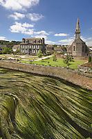 La riviere Le Blavet qui arrose Gouarec, allimente le canal de Bretagne. Il est couvert d'herbes en fleurs