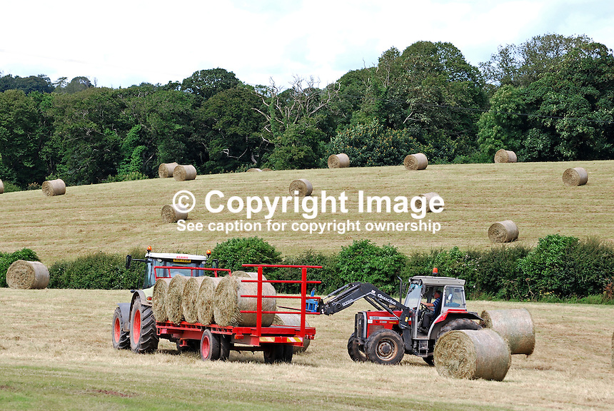 Harvesting, round bales, Ards Peninsula, N Ireland, 201207105961<br /> <br /> Copyright Image from Victor Patterson, 54 Dorchester Park, Belfast, UK, BT9 6RJ<br /> <br /> Tel: +44 28 9066 1296<br /> Mob: +44 7802 353836<br /> Voicemail +44 20 8816 7153<br /> Skype: victorpattersonbelfast<br /> Email: victorpatterson@me.com<br /> Email: victorpatterson@ireland.com (back-up)<br /> <br /> IMPORTANT: If you wish to use this image or any other of my images please go to www.victorpatterson.com and click on the Terms &amp; Conditions. Then contact me by email or phone with the reference number(s) of the image(s) concerned.