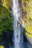 Akaka Falls waterfall, Big Island, Hawaii