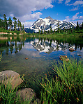 Mount Baker-Snoqualmie National Forest, WA <br /> Kellogg's Sedge (Carex kelloggii) tufts on the shore of Picture Lake with reflection of Mount Shuksan