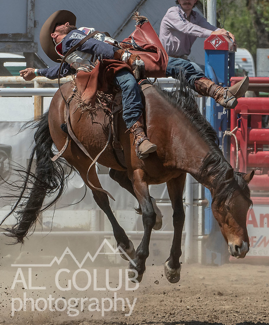 Bareback rider Mason Clements from Springville, Utah at the 68th annual Oakdale Saddle Club Rodeo on Sunday, April 14, 2019.  (Al Golub/Record Photo)