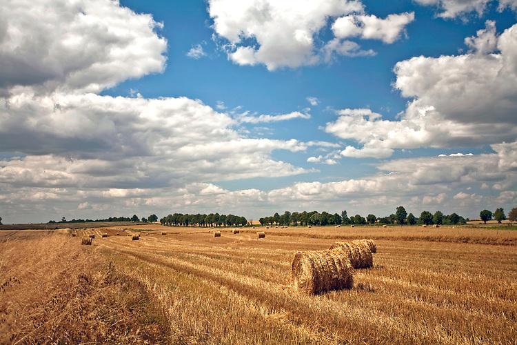 2009-08-09. Mazurski krajobraz, pola po żniwach - okolice Węgorzewa.