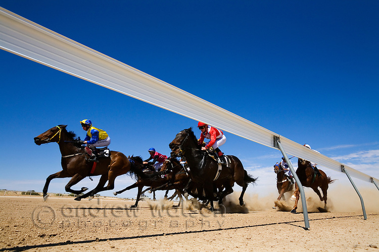 Outback horse racing at the annual Birdsville Cup Races.  Every September thousands arrive in the small outback town for the famous bush races.  Birdsville, Queensland, AUSTRALIA