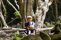 A small blonde boy holds a ball while sitting on a log beside a large tree at Limahuli Gardens, on Kauai's majestic north shore. One of the 5 National Tropical Botanical gardens in the US.