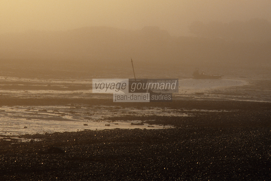Europe/France/Bretagne/22/Côtes d'Armor/Estuaire du Jaudy: Brume sur l'estuaire