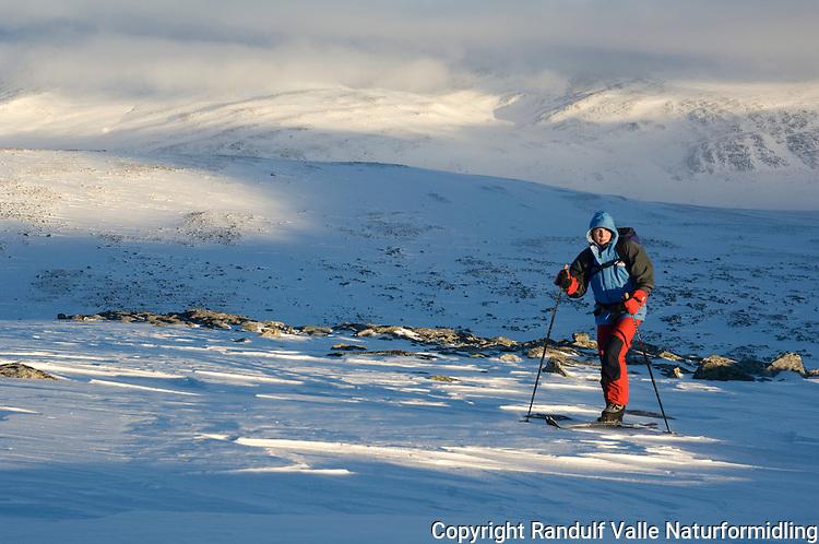 Jente på vei mot Snøhetta fra Reinheim ---- Girl skiing towards Snøhetta