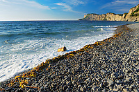 Shoreline along the Atlantic Ocean <br /> Forillion National Park<br /> Quebec<br /> Canada