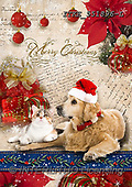 Isabella, CHRISTMAS ANIMALS, WEIHNACHTEN TIERE, NAVIDAD ANIMALES, realistic animals, realistische Tiere, animales re, paintings+++++,ITKE551896-L,#XA#