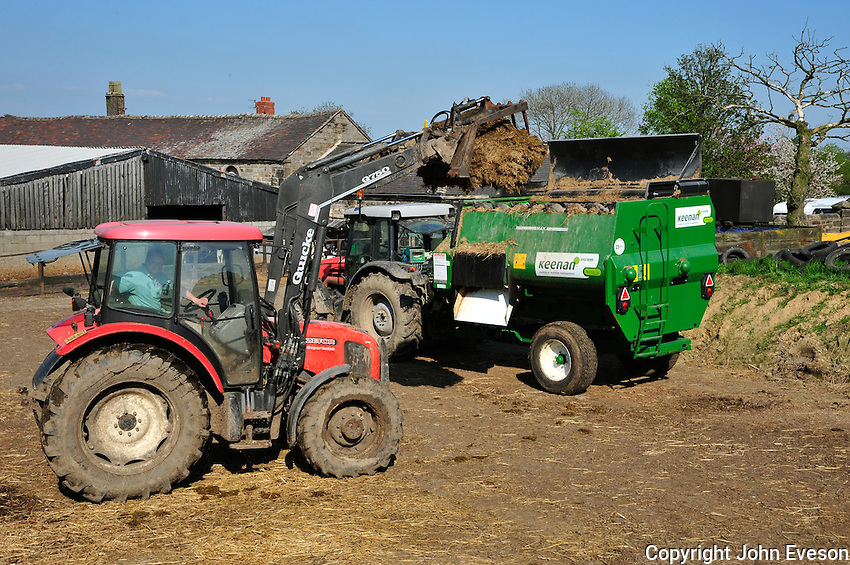 Loading a Keenan feeder wagon with silage, Staffordshire....Copyright..John Eveson, Dinkling Green Farm, Whitewell, Clitheroe, Lancashire. BB7 3BN.01995 61280. 07973 482705.j.r.eveson@btinternet.com.www.johneveson.com