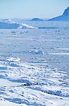 Village de Tiniteqilaq devant la banquise. Groënland (côte Est). Région d'Angmagssalik (Ammasalik ou Tassilaq). Tiniteqilaq village in front of the ice floe. Greenland (East coast).