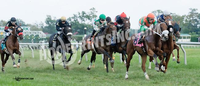 Run Tayler Run winning at Delaware Park on 9/5/13