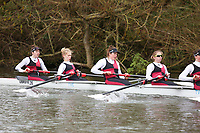 Crew: 216   W U23 8+ U23   Bristol, University of, Boat Club   UBR-BEER-2<br /> <br /> Wallingford Head 2017<br /> <br /> To purchase this photo, or to see pricing information for Prints and Downloads, click the blue 'Add to Cart' button at the top-right of the page.