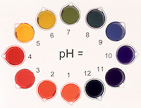 pH INDICATOR: UNIVERSAL INDICATOR pH 1-12<br />