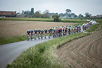 Peloton chasing the race leaders.<br /> <br /> GP Marcel Kint 2019 (BEL)<br /> One Day Race: Kortrijk – Zwevegem 188.10km. (UCI 1.1)<br /> Bingoal Cycling Cup 2019