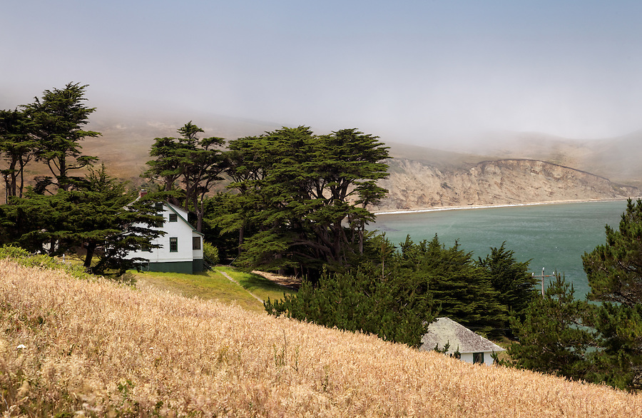 Residence surrounded by Monterey cypress trees above Historic Lifeboat Station, Chimney Rock Trail, Point Reyes National Seashore, California, USA