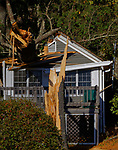 Small cottage damaged by a falling tree, Lincolnville, Maine, USA