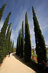 Israel, the Bahai garden in Bahji near Acco